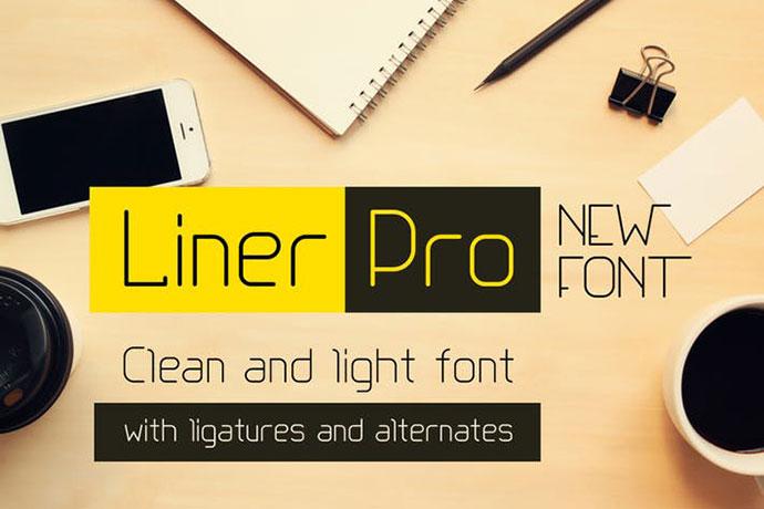 Liner Pro