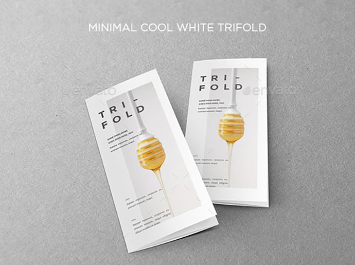 Minimal Cool White Trifold