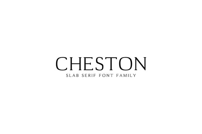 Cheston Slab Serif Font Family Set