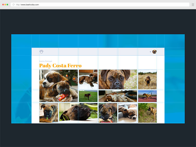 Responsive layouts and components