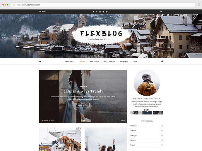 Flexblog - A WordPress Blog Theme