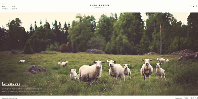Andy Parker - Creative Photography & Portfolio WordPress Theme