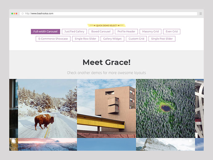 Instagram Feed Gallery — Grace for WordPress