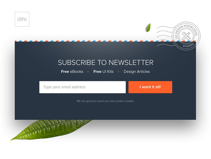 UXPin Newsletter Signup