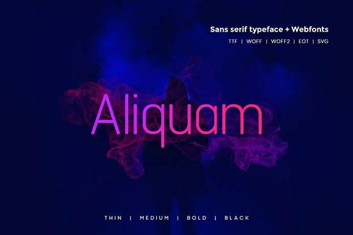 Aliquam - Modern Typeface + WebFonts