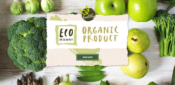 26 Fresh Fruit & Vegetable Business WordPress Themes