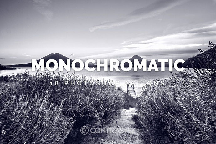 Monochromatic Photoshop Actions