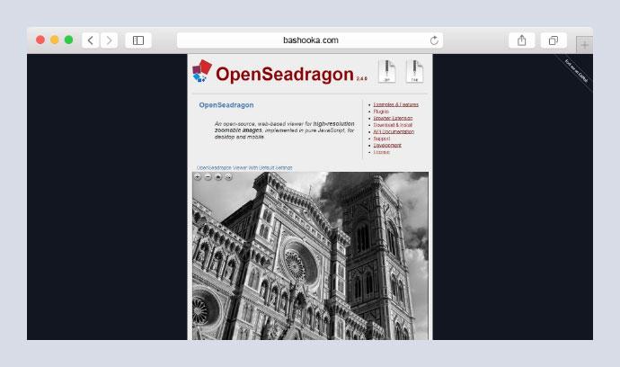 OpenSeadragon