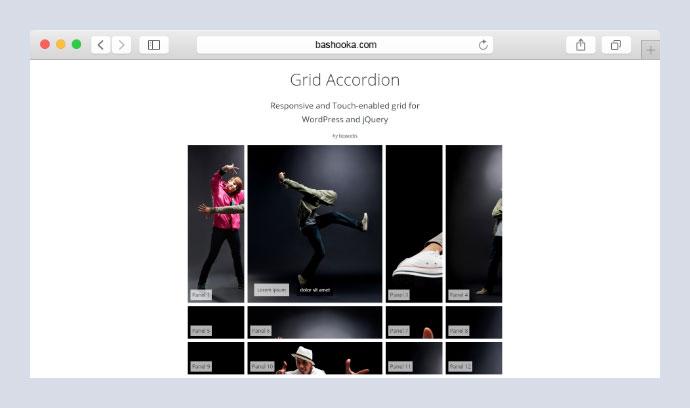 Grid Accordion - Responsive WordPress Plugin