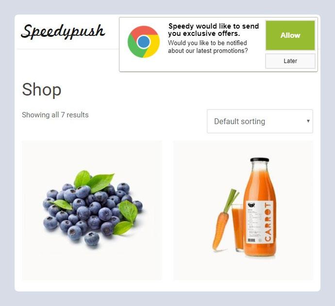 Speedy Push - WordPress Notification Plugin