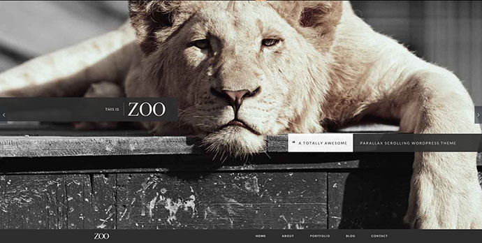 Zoo One Page Parallax Theme
