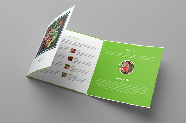 Brochure – Organic Food Tri-Fold Square