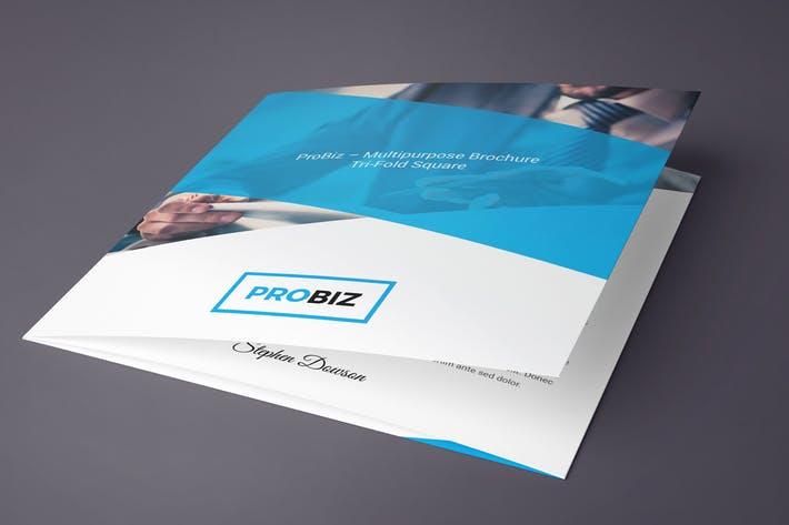 ProBiz – Brochure Tri-Fold Square