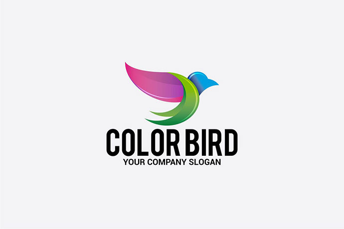Color Bird
