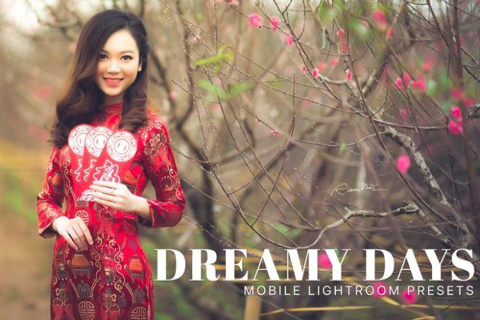 Dreamy Days Lightroom Mobile Presets