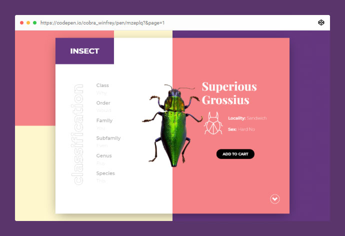 Pure CSS Bug Ecommerce Interactions