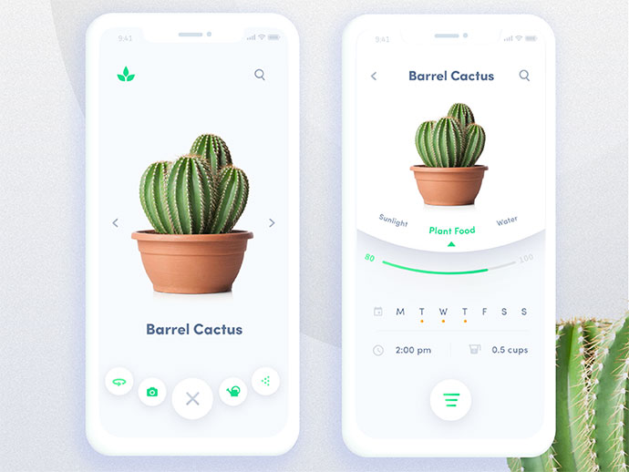 Automated Plant App