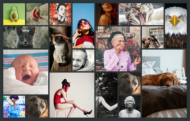 40 CSS & Javascript Image Gallery Examples
