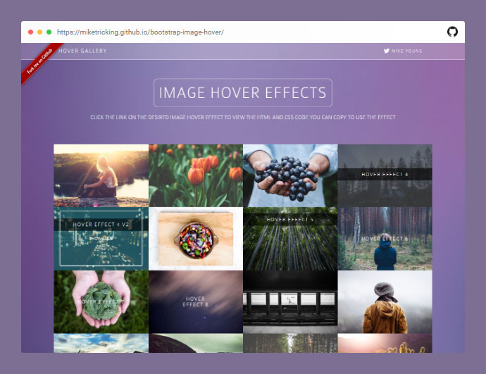 Bootstrap Image Hover