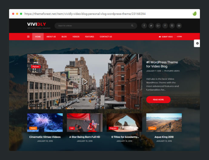 Vividly | Video Blog WordPress Theme