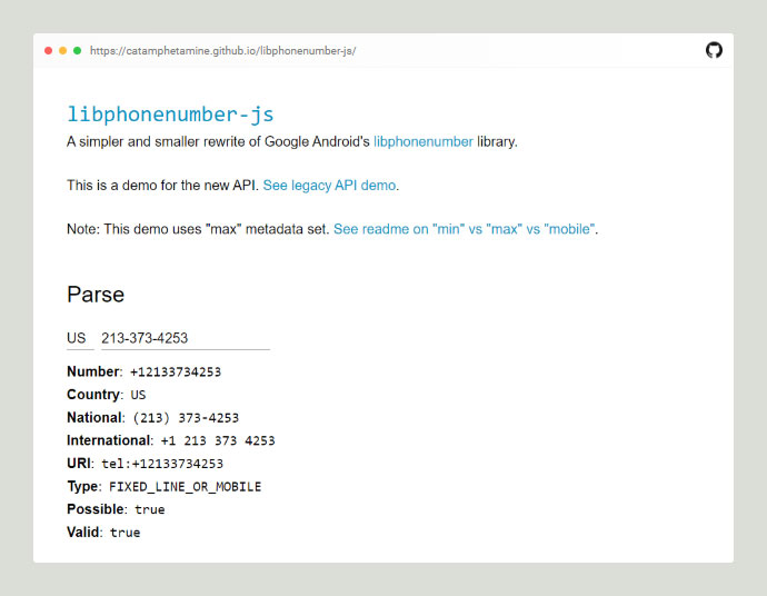 Libphonenumber Js