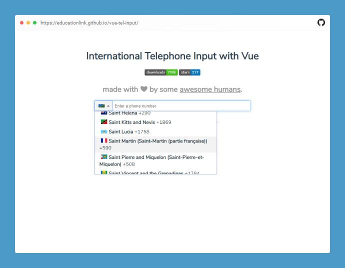 Vue Tel Input