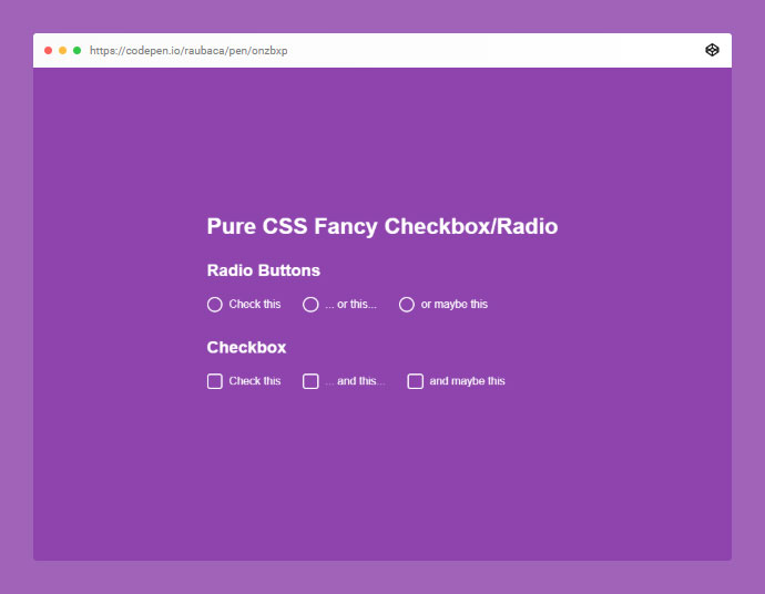 Pure CSS Fancy Checkbox/radio
