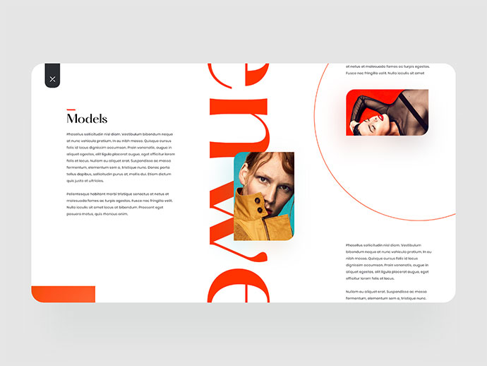 Zummedy Store + Blog Design