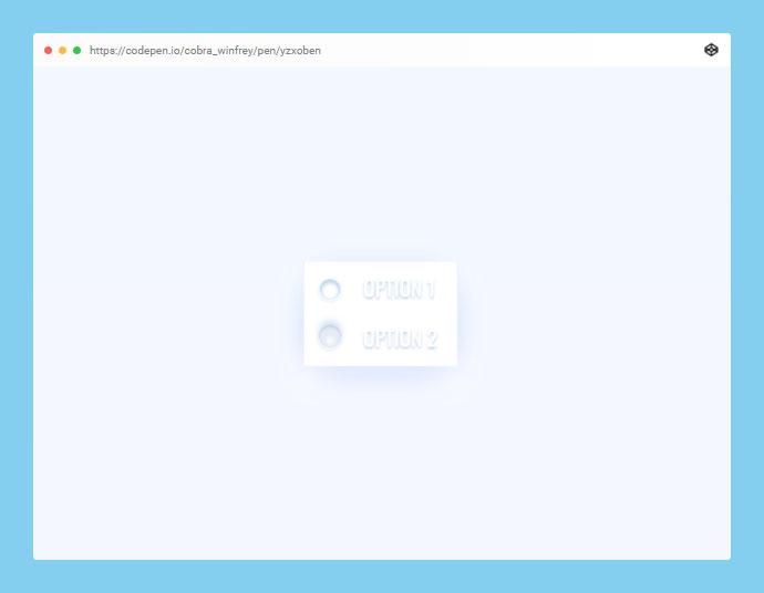 CSS Neumorphic Toggle